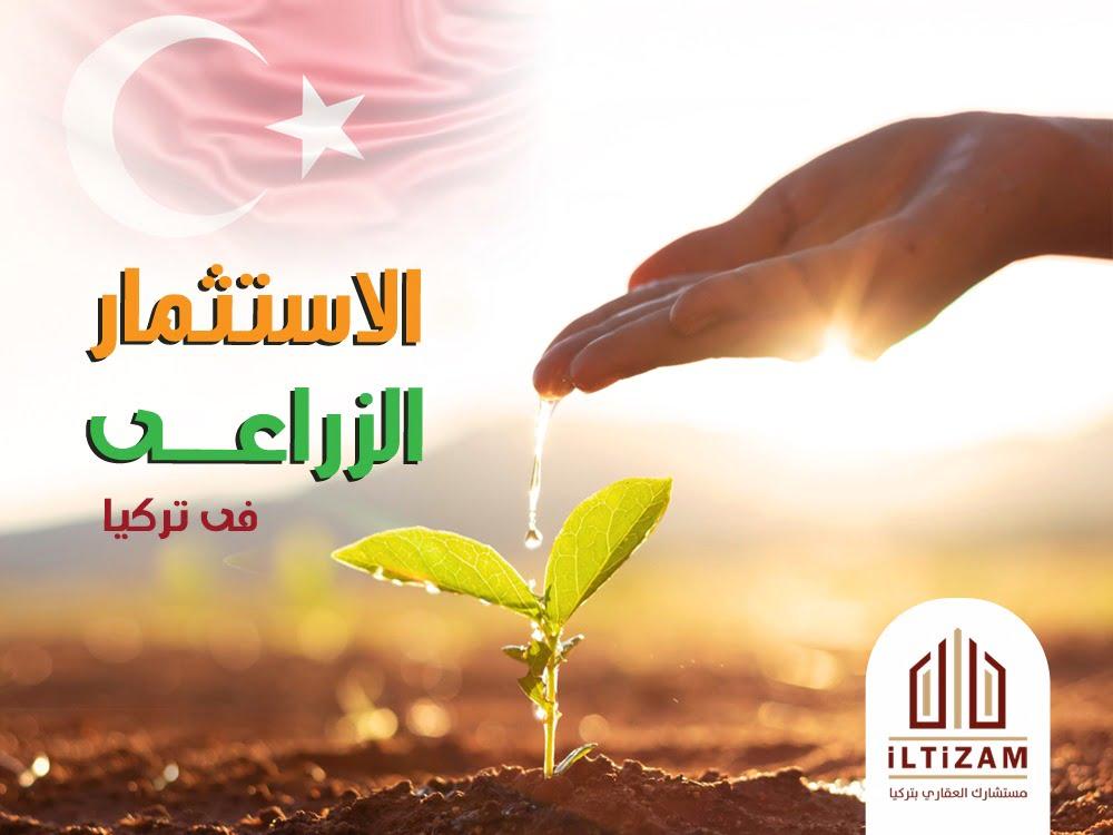 اراضي تركيا للبيع  اراضي في تركيا